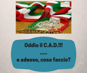 Codice dell'Amministrazione digitale + Michele + VIanello+ Madia
