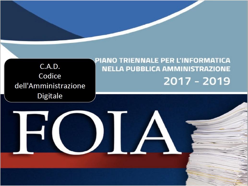 michele vianello foia privacy pubblica amministrazione